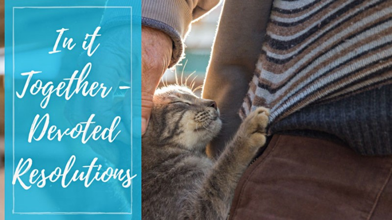 In it Together – Devoted Resolutions